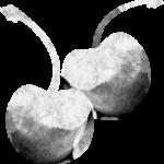 Μαρμελάδες Φρούτων